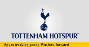 tottenham transfer rumors